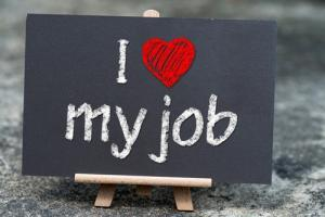 How much do you love your job?